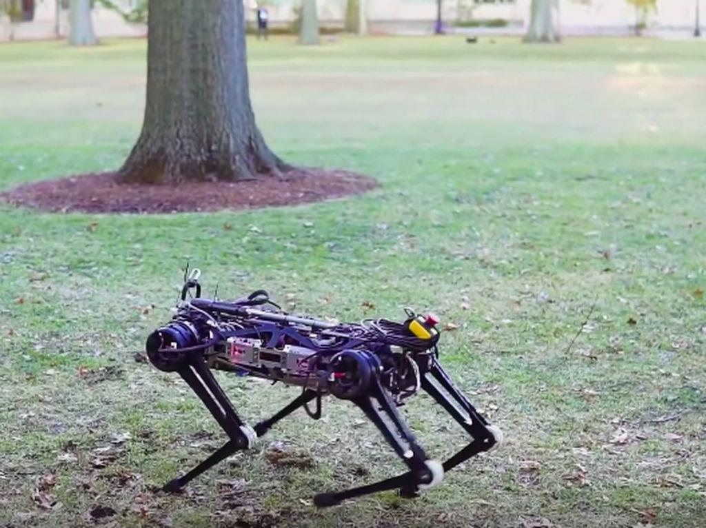 Canggih! Robot Cheetah Bergerak Lincah Tanpa Melihat
