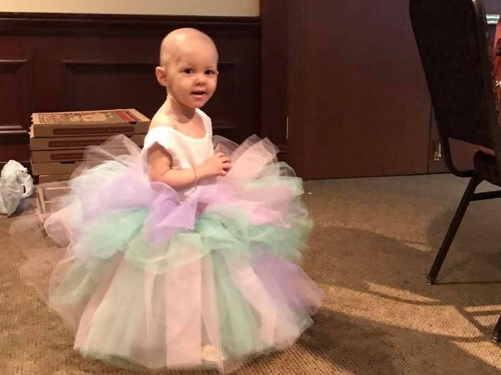 Kisah Balita Berusia 15 Bulan yang Berjuang Lawan Kanker Ovarium