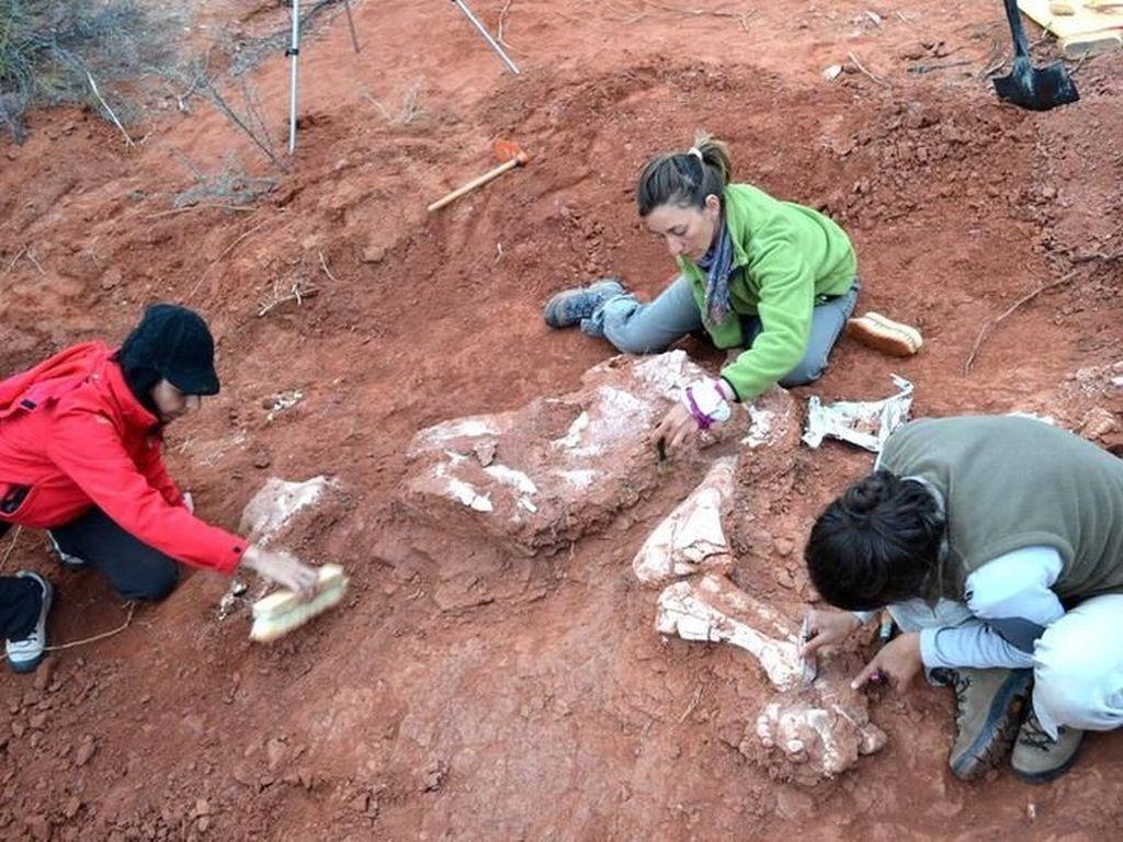 Ilmuwan Gali Fosil Dinosaurus Berusia 220 Juta Tahun di Argentina
