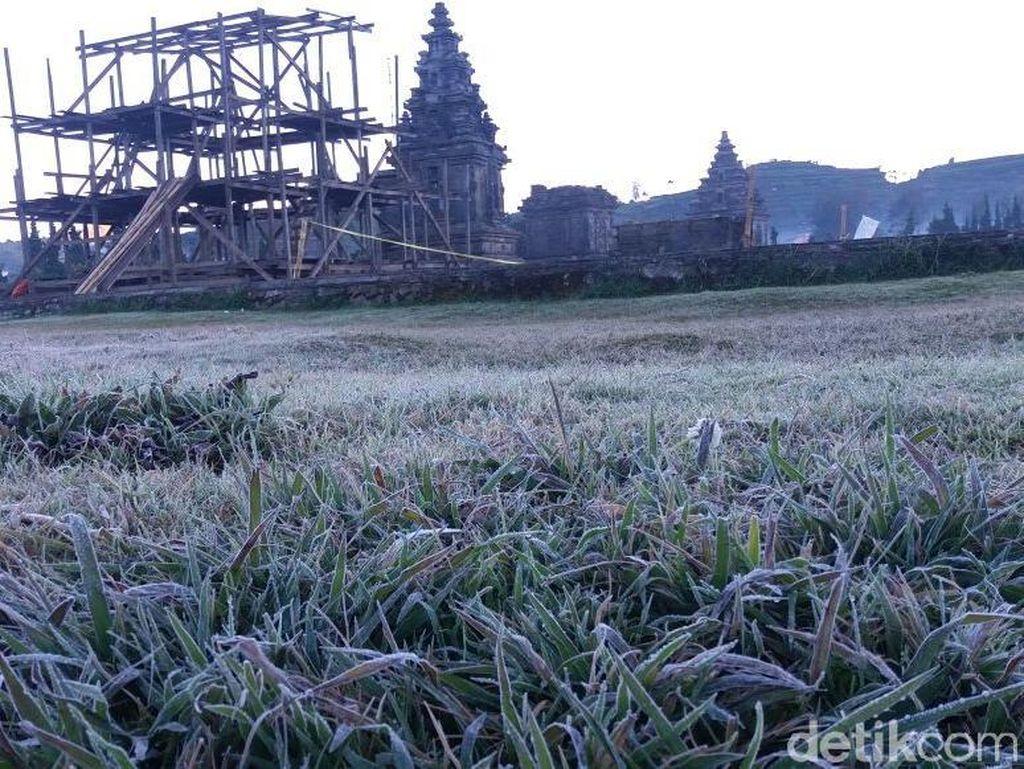 Foto: Dieng yang Membeku Diselimuti Es