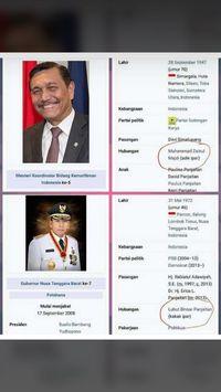 Cek Wikipedia, Gerindra Tuding TGB Pro Jokowi karena Ipar Luhut