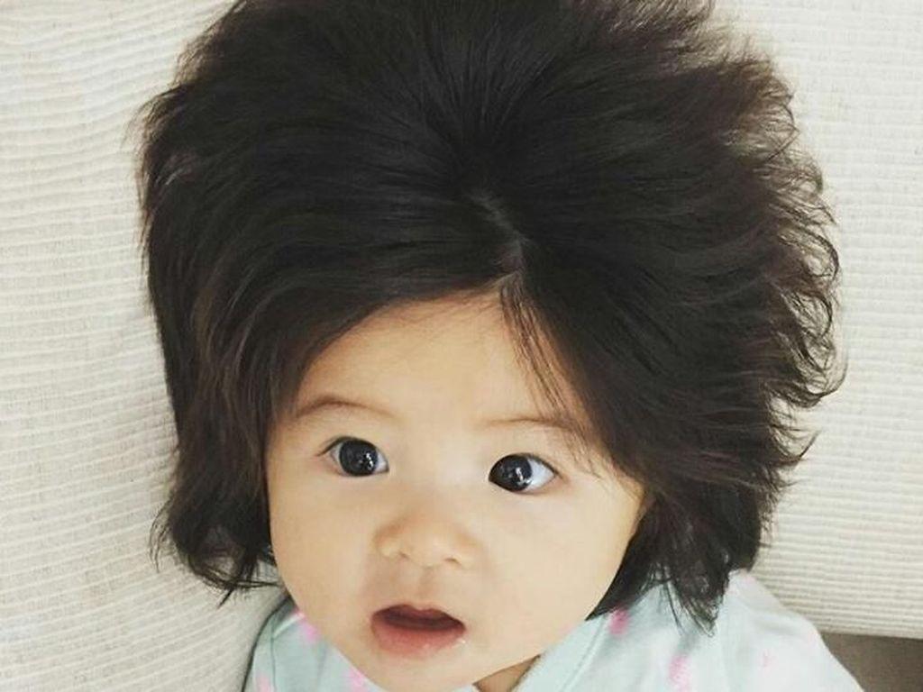 Punya Rambut Super Tebal, Bayi 6 Bulan Ini Bikin Gemas Netizen