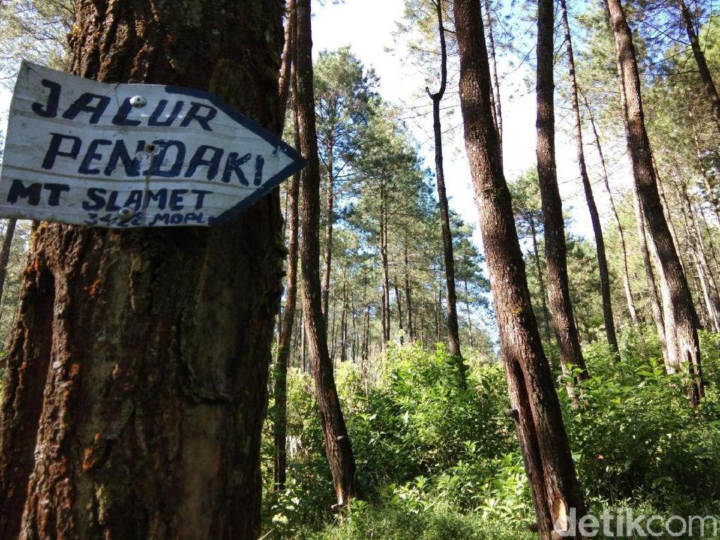 Nekat Daki Gunung Slamet, Siap-siap Diblacklist 2 Tahun