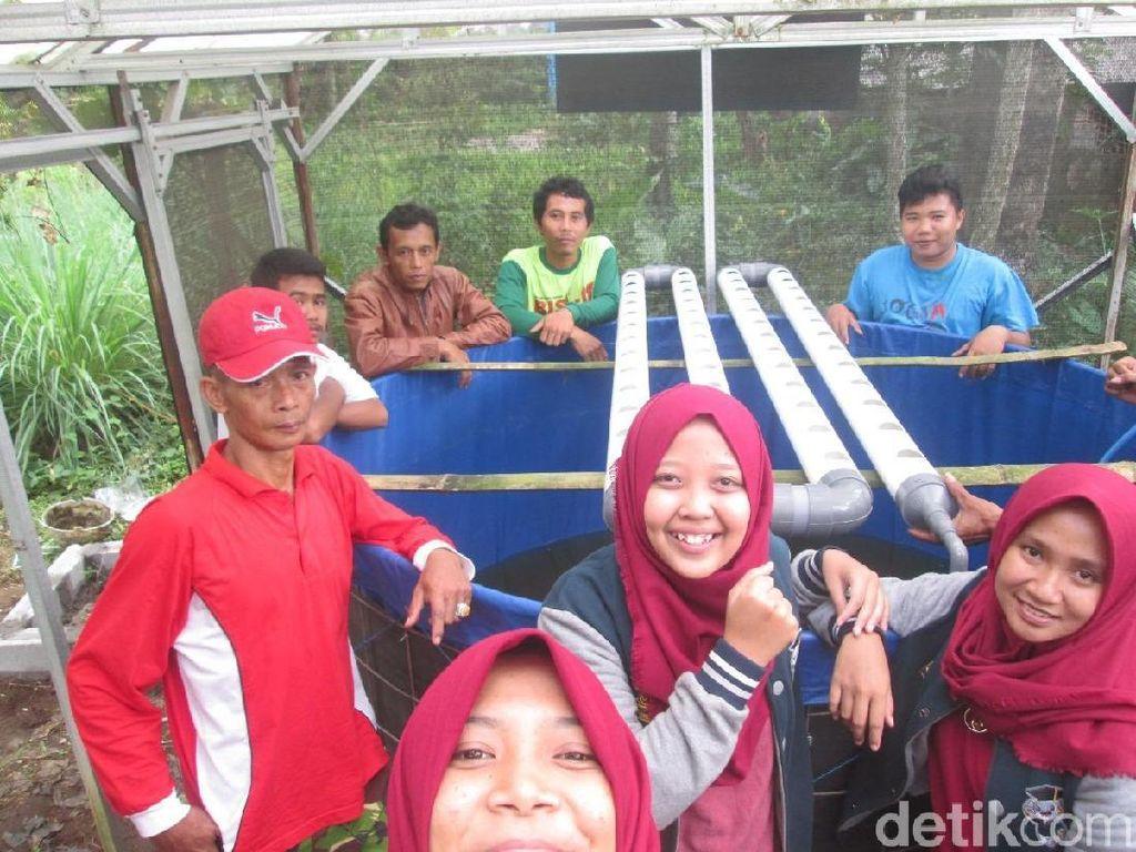 Mahasiswa UB Budidaya Pakan Ikan Lele dari Serangga Ceremenje