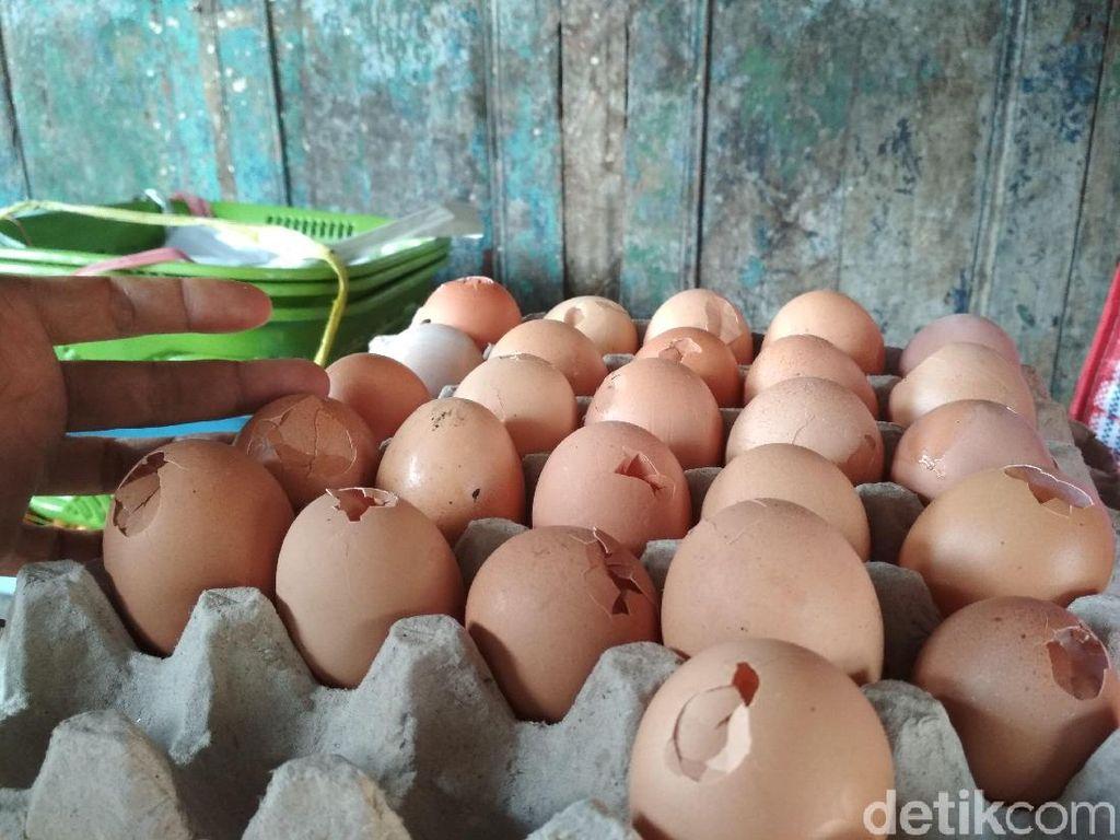 Telur Bentesan Ramai di Blitar, Amankah Makan Telur yang Cangkangnya Rusak?