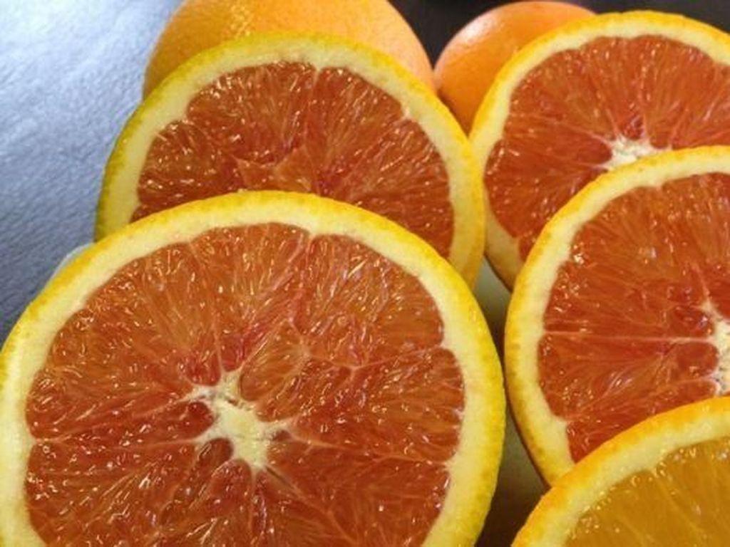 Sudah Sedia Buah di Rumah? Makan Jeruk Tiap Hari Bantu Cegah Kebutaan Lho