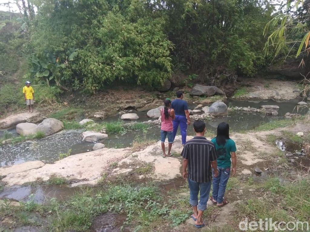 Mengapa Kampung di Mojokerto Ini Jadi Habitat Sanca, Ini Penjelasannya