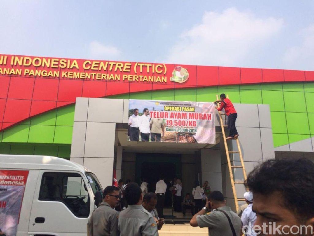 Kementan Operasi Pasar Telur Ayam, 100 Ton Disebar ke Jabodetabek