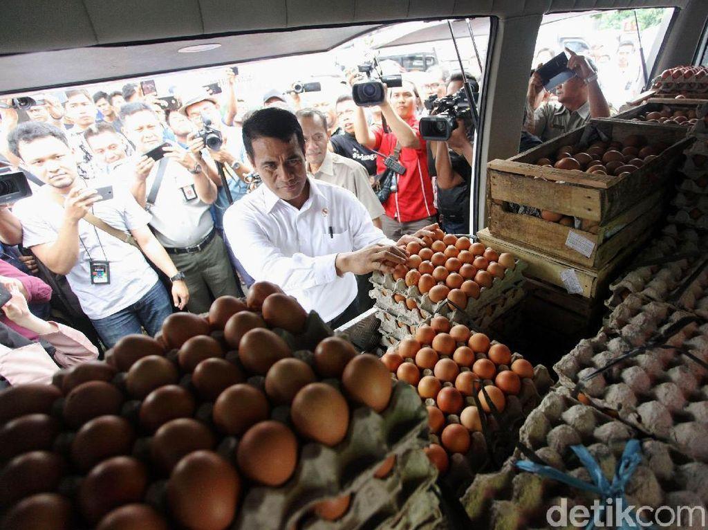 Harga Telur di Peternak Naik Rp 1.000, Bagaimana untuk Konsumen?