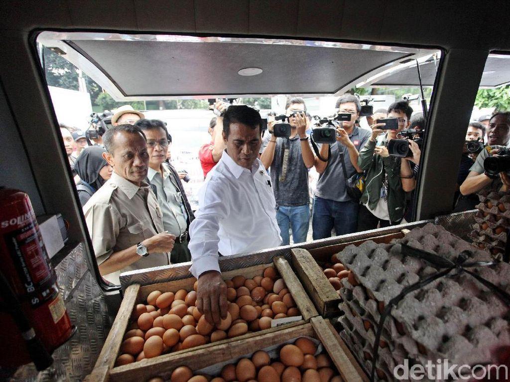 100 Ton Telur Ayam Disebar ke Jabodetabek