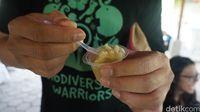 Es krim rasa jamu beras kencur, inovasi modern Kampoeng Djamoe Organik CIkarang