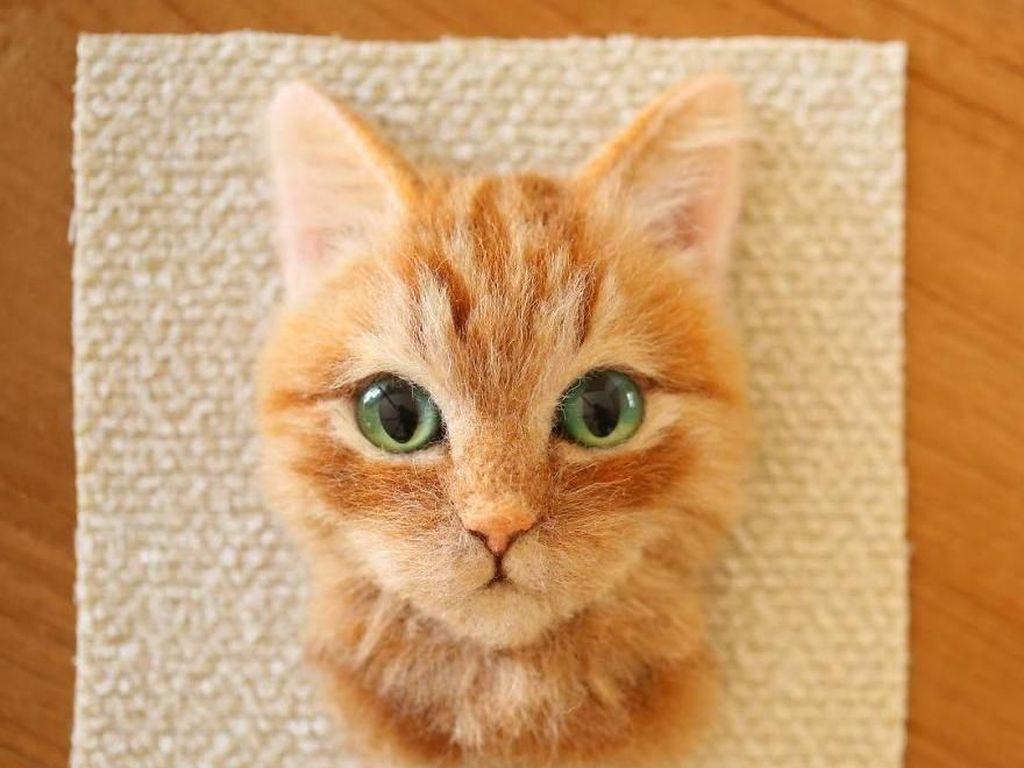 Wow! Hiasan Kucing Ini Terlihat Seperti Asli
