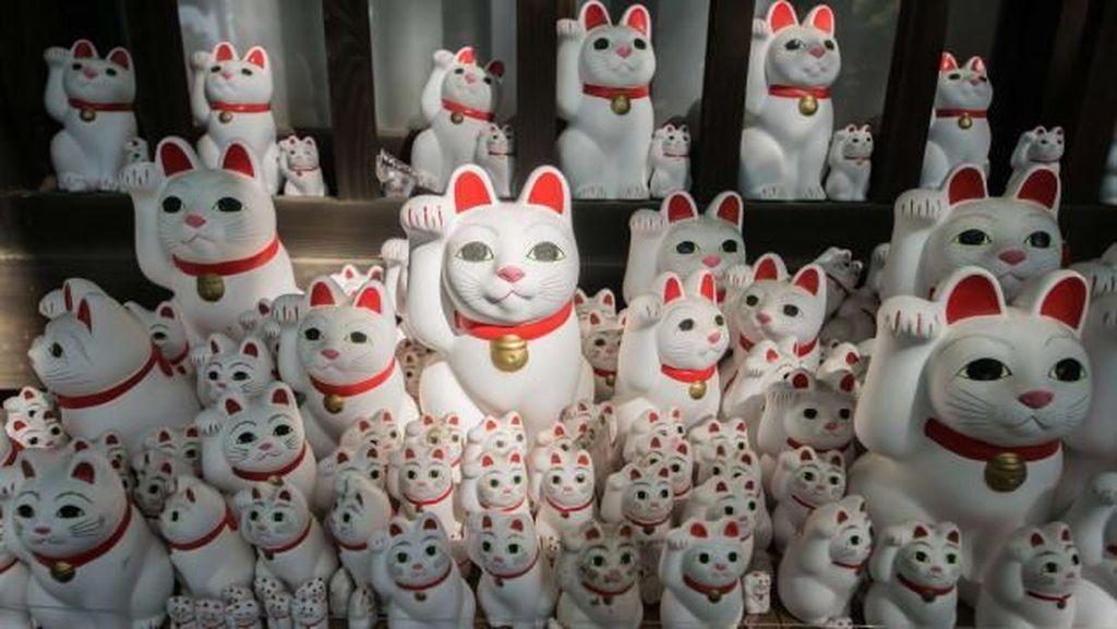 Foto Kucing Pembawa Keberuntungan dari Jepang