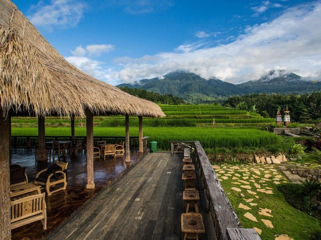 Keren! 6 Restoran Ini Suguhkan Pemandangan Sawah hingga Samudra