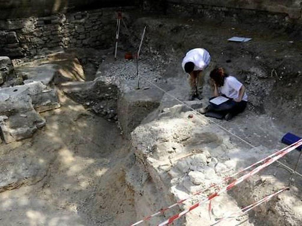 Fosil Gigi Susu Berusia 560 Ribu Tahun Ditemukan di Gua Prancis