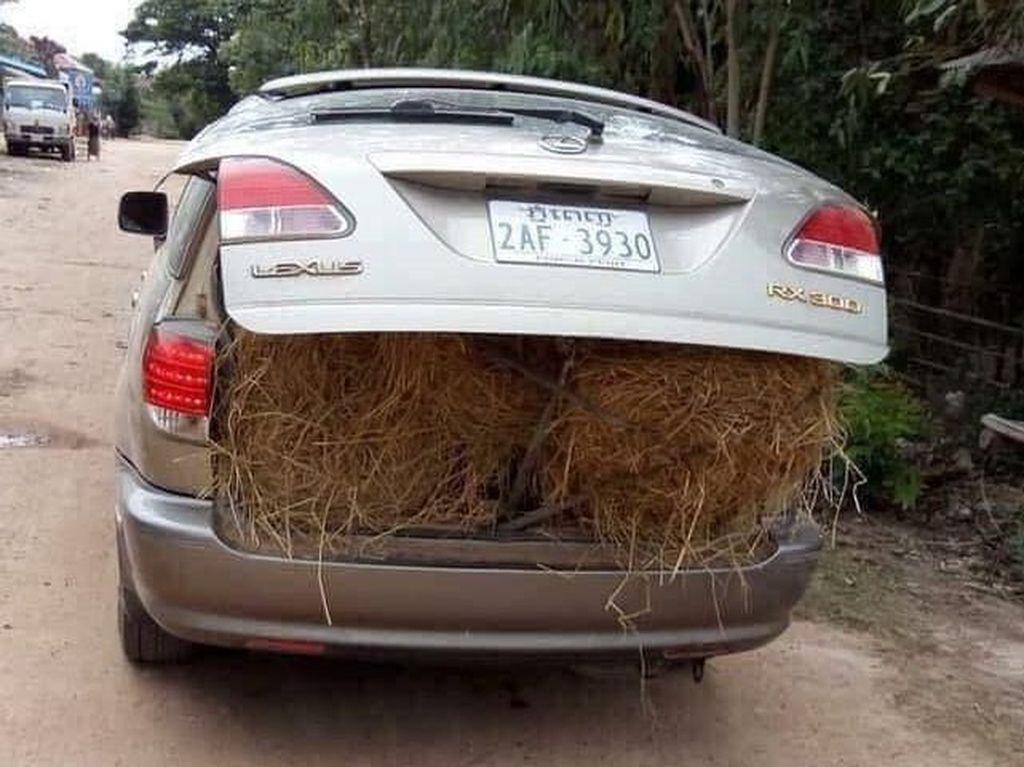 Orang Kaya! Mobil Mewah untuk Angkut Jerami