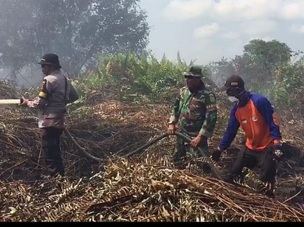 Kebakaran Lahan Gambut di Jambi Meluas, Tim Gabungan Dikerahkan