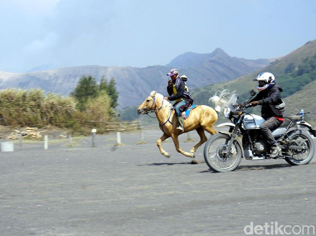 Foto: Keren! Adu Cepat Kuda Bromo vs Motor Adventure