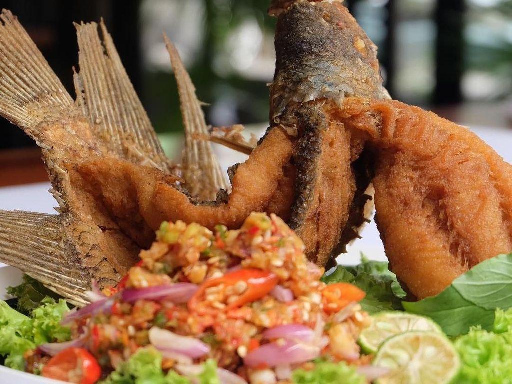 Krenyes Gurih! Ikan Gurame Terbang Pilihan Enak Buat Makan Siang