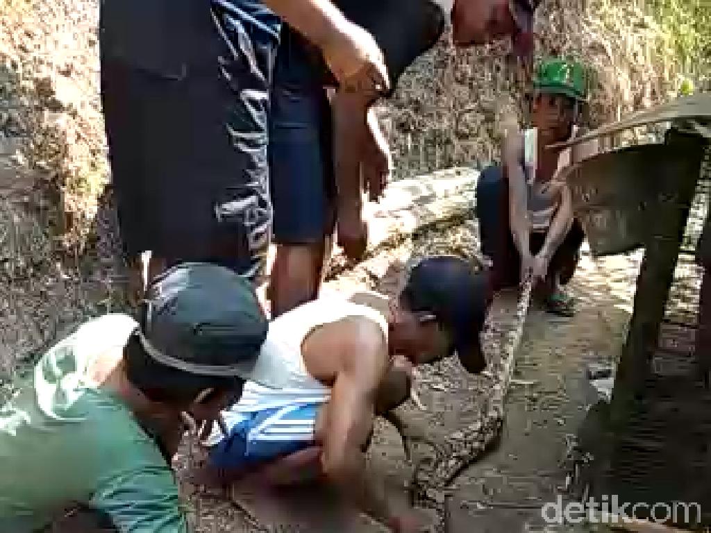 Dimintai Uang Lelah untuk 3 Sanca di Kampung Ular, Ini Kata BKSDA