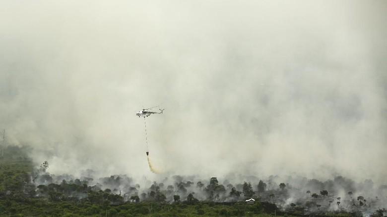 Pekanbaru Mulai Diselimuti Kabut Asap