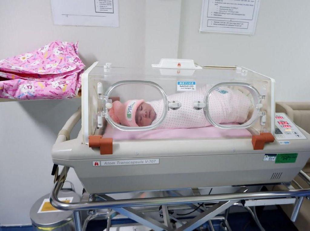Ini Nama Cucu Kedua Jokowi