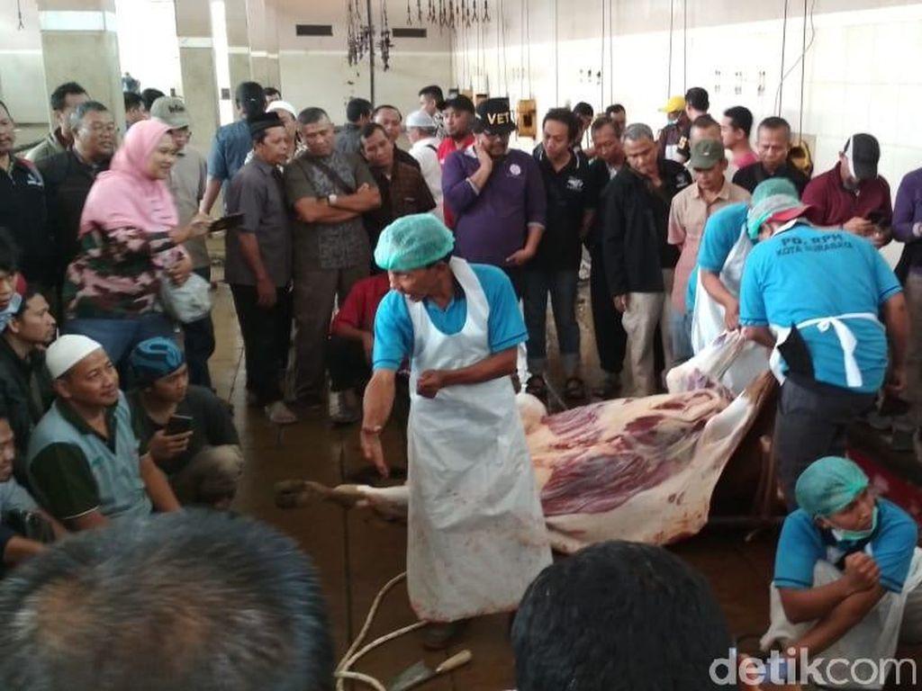 250 Takmir Masjid di Surabaya Diajari Cara Sembelih Hewan Kurban