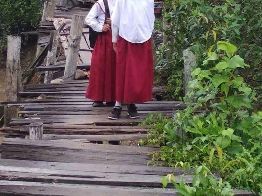 Potret Lapuknya Jembatan di Riau yang Jadi Akses Utama Warga