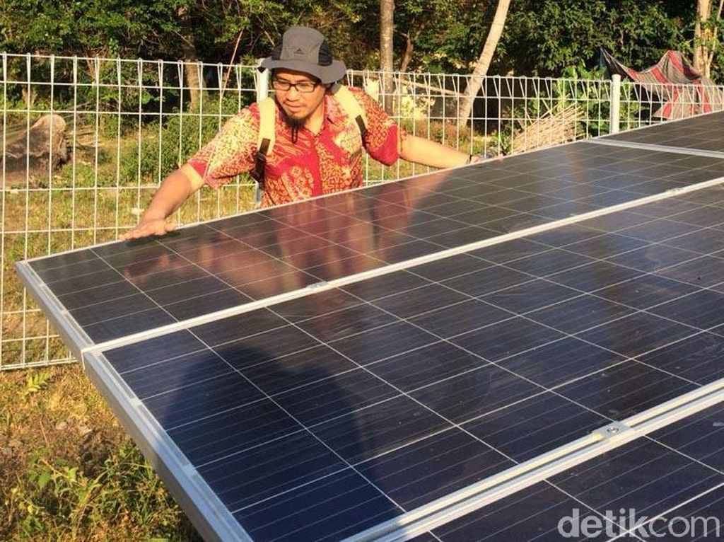 Ini Lho Kebun Matahari di Pulau Genting Karimunjawa