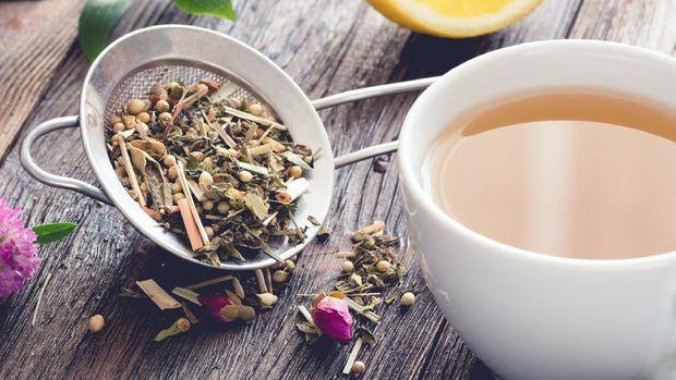 Ilustrasi herba obat kuat