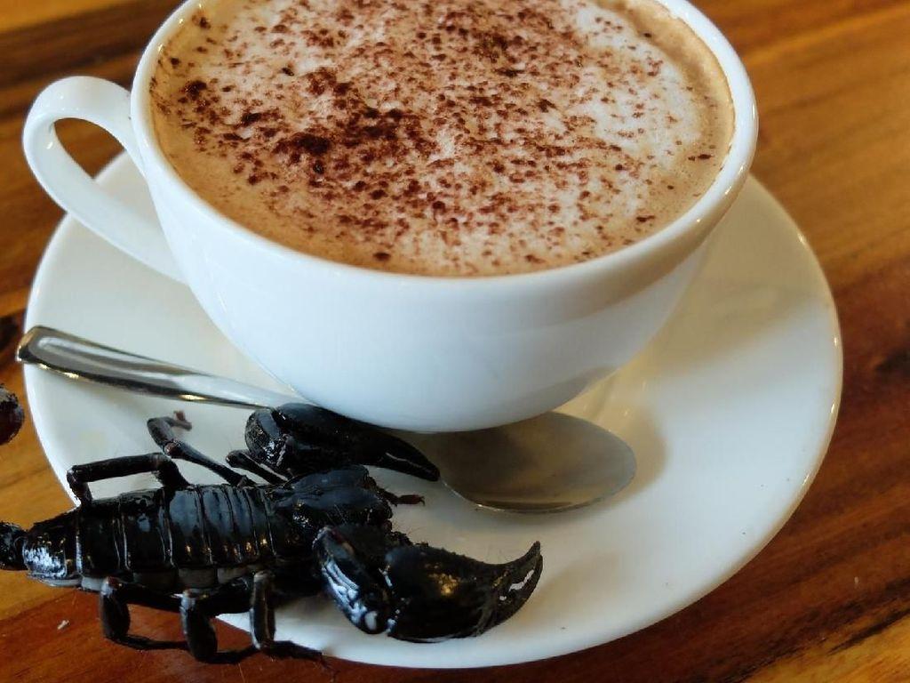 Di Kafe Ini, Bisa Minum Kopi Sambil Bermain dengan Kalajengking dan Tarantula