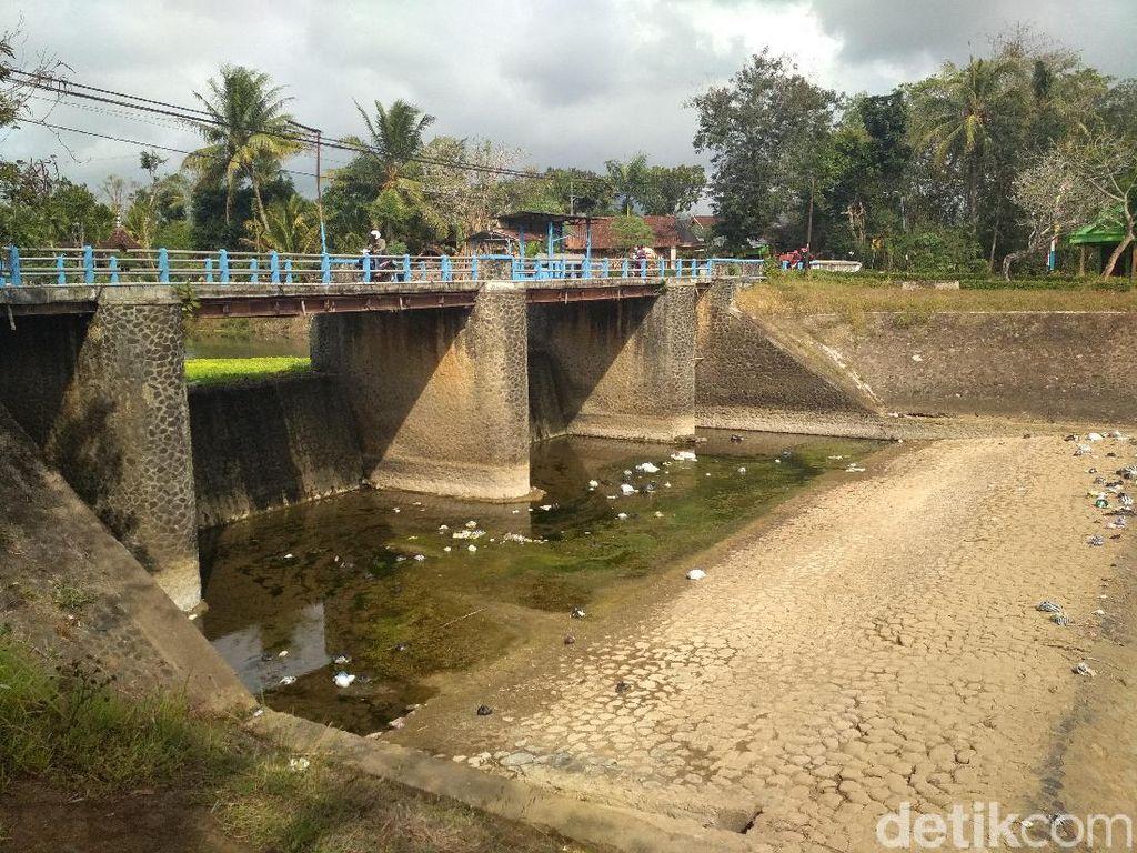 Musim Kemarau, Debit Air Sungai di Trenggalek Turun 90 Persen
