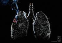 Ini Sebabnya Wanita Merokok Lebih Susah Hamil