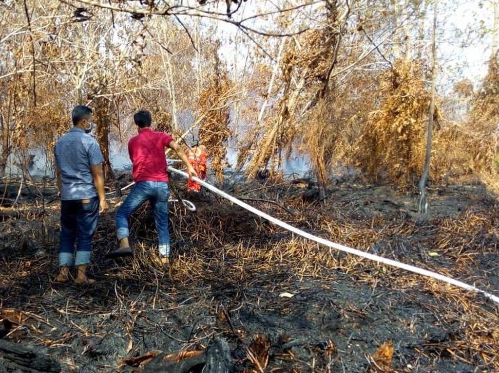 KLHK Waspadai Hotspot Kebakaran Hutan dan Lahan di Bulan Agustus