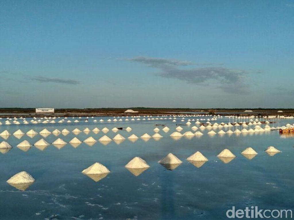 Kelola Ladang di NTT, PT Garam Targetkan Produksi 19.000 Ton/Tahun