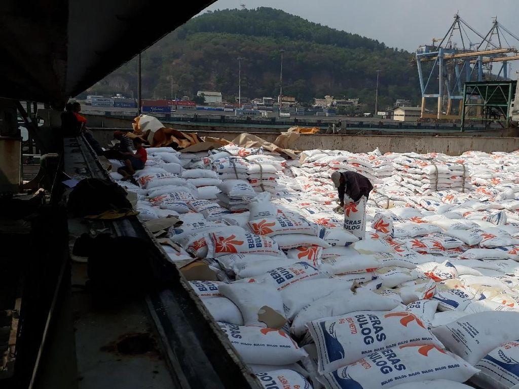 Darmin Minta Penjelasan Mendag Soal Persetujuan Impor Bawang Putih