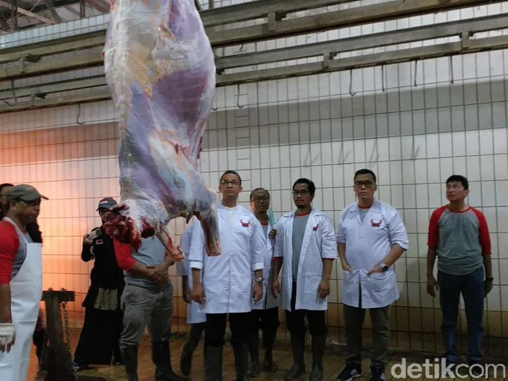Melihat Proses Pemotongan Hewan Kurban di RPH PD Dharma Jaya