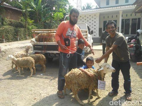 Izzat berhasil membeli kambing setelah 4 tahun menabung