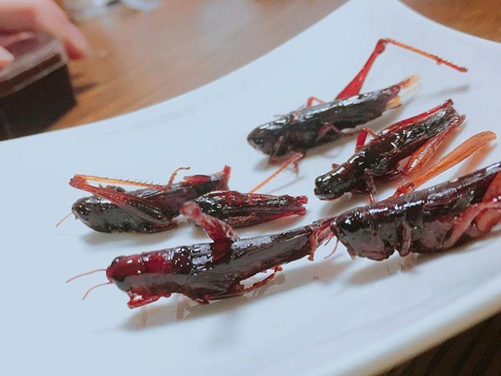Siapa Mau Coba 5 Makanan Unik dari Jepang Ini?