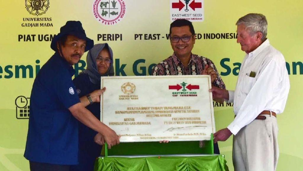 Bank Genetik Sayuran Pertama Indonesia