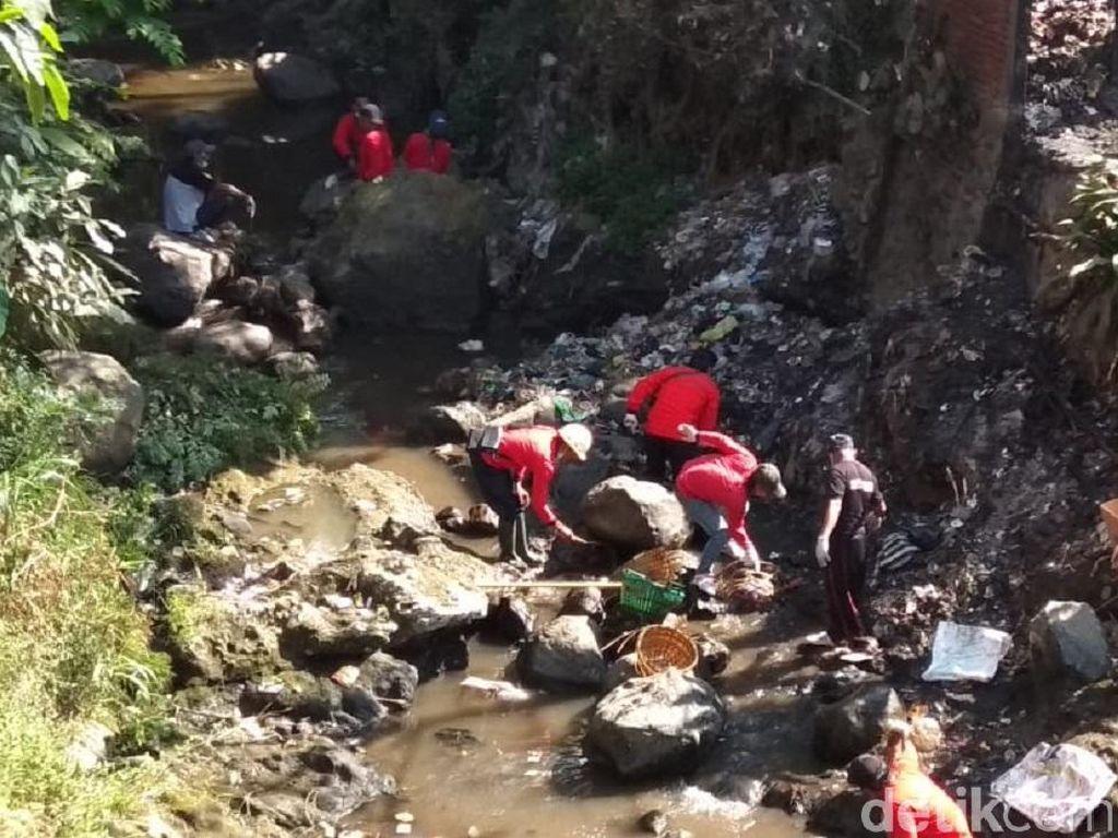 Melihat Ratusan Relawan Bersihkan Hulu Sungai Rawa Pening
