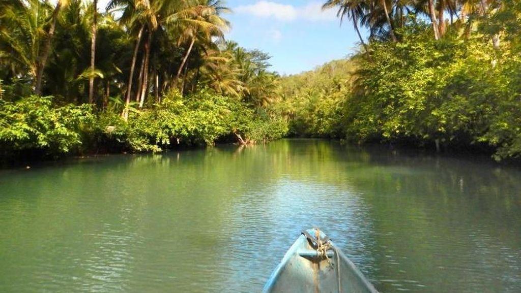 Foto: Menyusuri Sungai Amazon dari Pacitan
