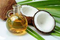 Ilustrasi kelapa