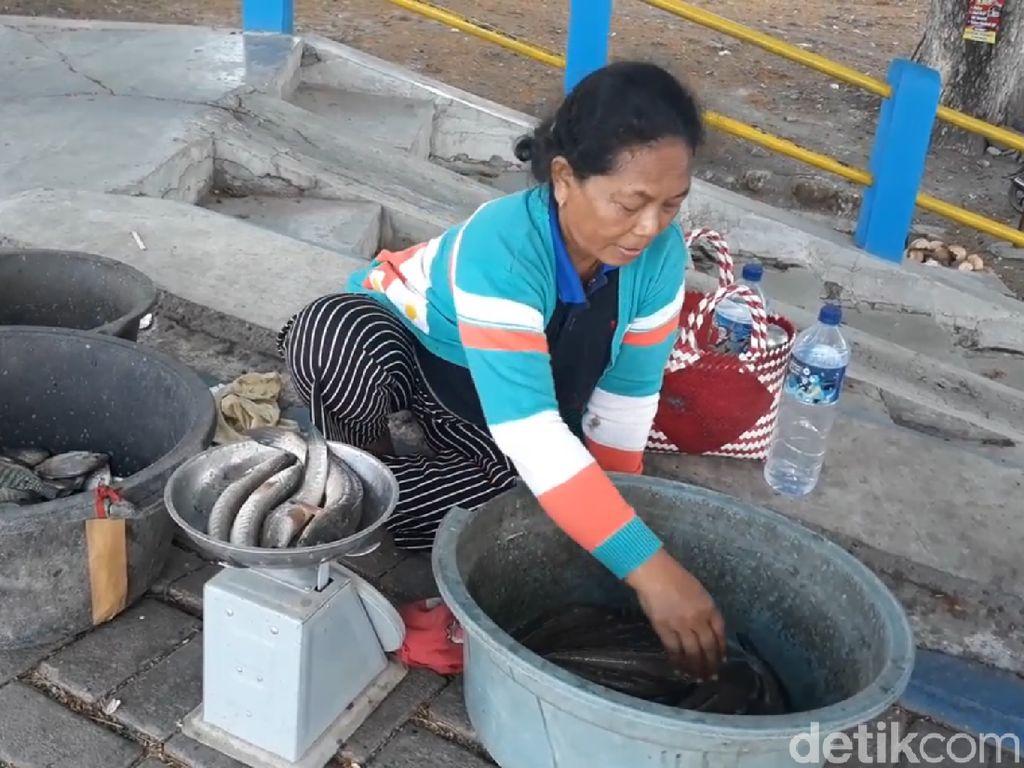 Berkah Penjual Ikan Musiman Saat Wisata Waduk Notopuro Mengering