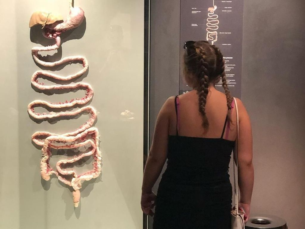 Belajar Organ Manusia di Museum Jenazah, Ngeri atau Keren?