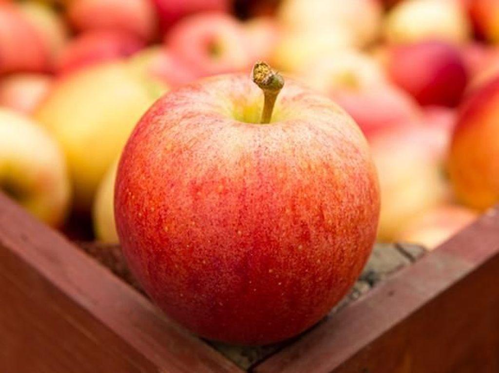 4 Manfaat Buah Apel di Menu Sarapan Kamu (1)
