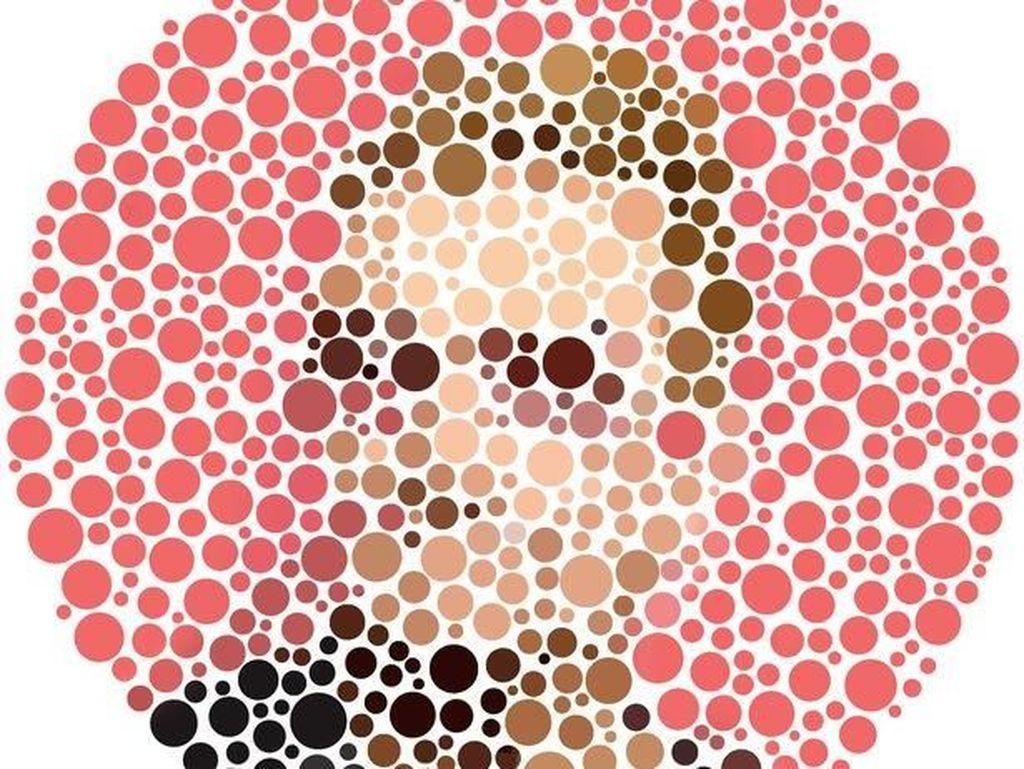 Setajam Apakah Saraf Mata Anda? Cek dengan Tes Buta Warna Ini (2)