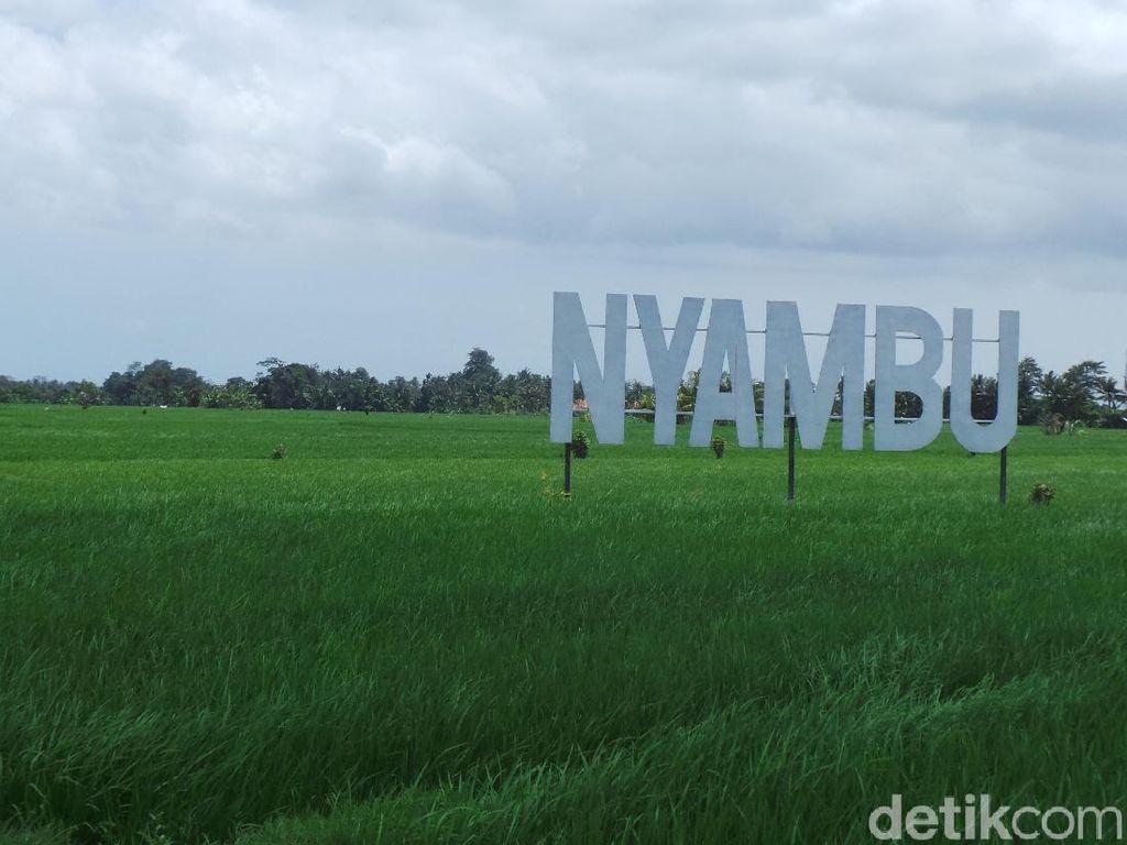 Mimpi Desa Wisata Nyambu Jadi Ubud Kedua di Pulau Dewata