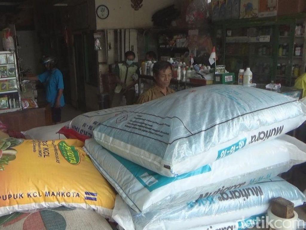 Harga Pupuk di Jombang Naik Hingga 22% Imbas Rupiah Anjlok