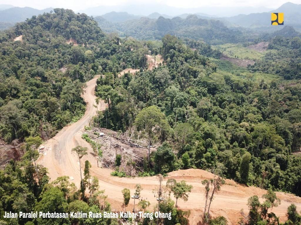 Ada Hutan Industri di Lokasi Ibu Kota Baru RI